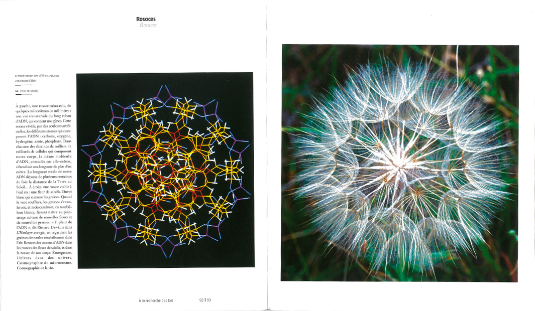 Quand l'art rencontre la science - pages intérieures 2