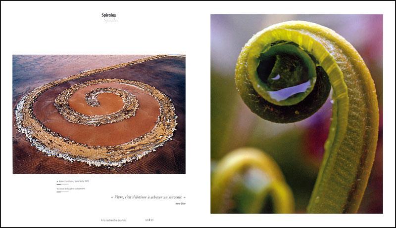 Quand l'art rencontre la science - pages intérieures 3